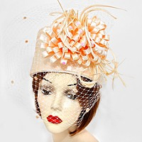Feather Accented Birdcage Veil Dressy Hat