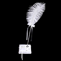 Wedding guest book feather pen & holder set