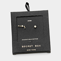Secret Box _ CZ Zodiac Sign Aries Stud Earrings