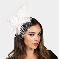 Feather Plume Netting Hair Pinch Clip / Brooch