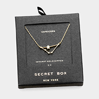 Secret Box _ CZ Zodiac Sign Capricorn Pendant Necklace