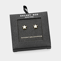 Secret Box _ 14K Gold Dipped Metal Star Stud Earrings