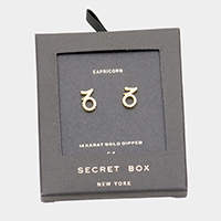 Secret Box _ CZ Zodiac Sign Capricorn Stud Earrings