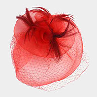 Veil Mesh Floral Feather Fascinator / Headband