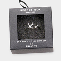 Secret Box _ 14k Gold Dipped CZ Zodiac Sign Aquarius Ring