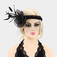 Feather Plumes Birdcage Veil Fascinator