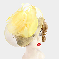 Rosette Feather Embellished Mesh Fascinator