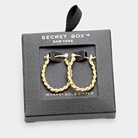 Secret Box _ 14K Gold Dipped Twisted Metal Oval Hoop Pin Catch Earrings
